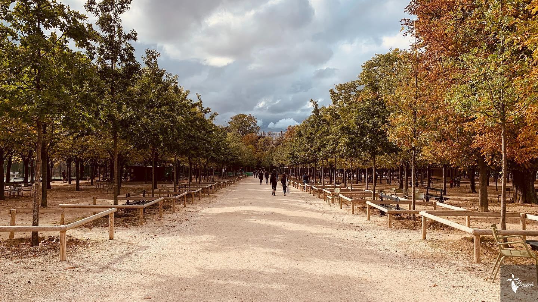 Automne Paris 2020 by La Photo de Jaz
